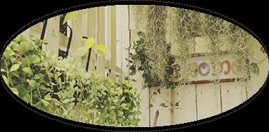手作り雑貨&観葉植物 Kinomi